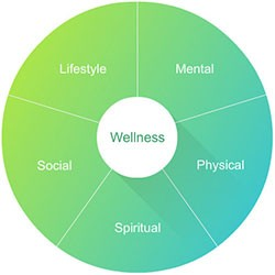 Wellness-Defined