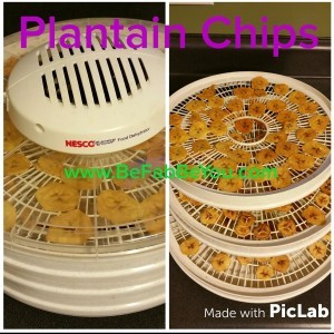 dehydrated plantain chips