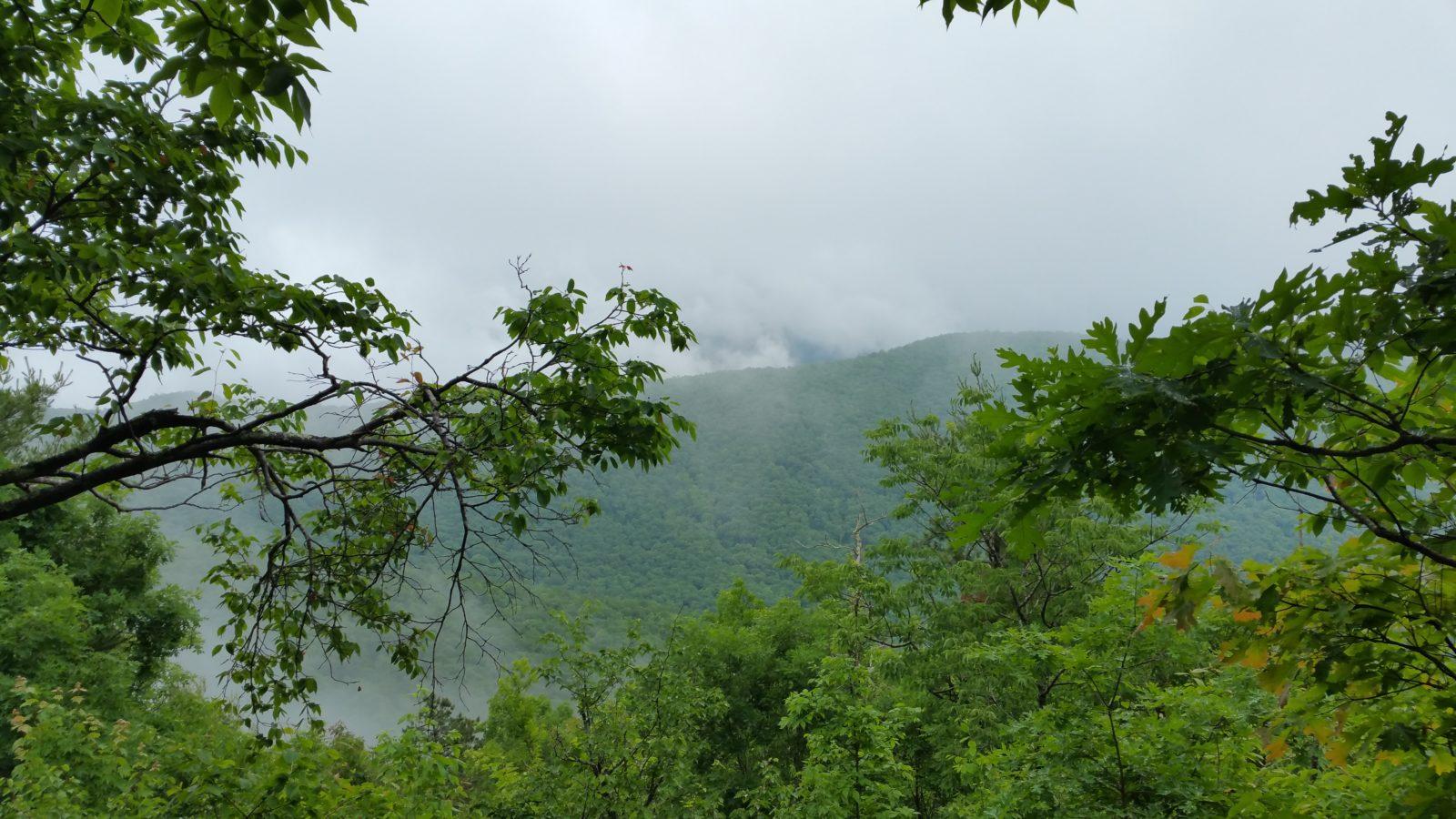 Unicoi-Trail-View