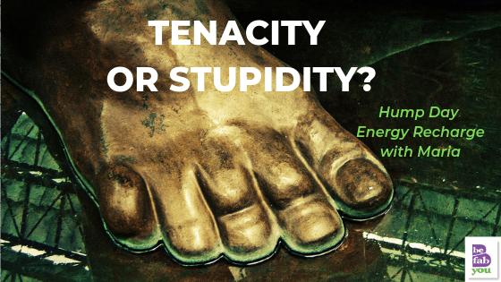 Tenacity-stupidity-stop-assess-help-BeFabBeYou